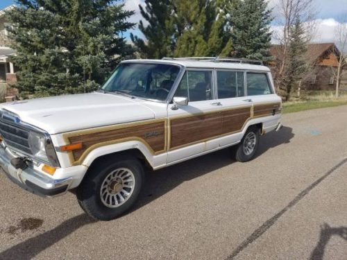 1989 Jeep Grand Wagoneer V8 Automatic For Sale in Denver ...
